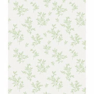 Picture of Pothos Light Green Toss Wallpaper