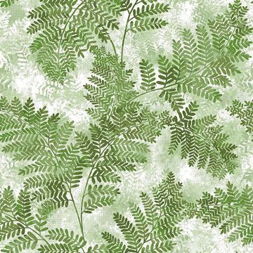 Picture of Cyathea Green Fern Wallpaper