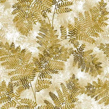 Picture of Cyathea Honey Fern Wallpaper