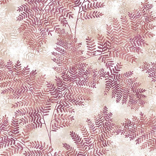 Picture of Cyathea Pink Fern Wallpaper