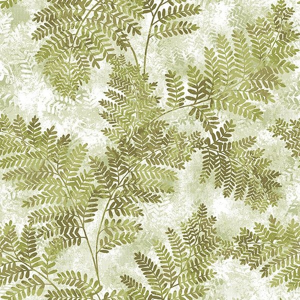 Picture of Cyathea Light Green Fern Wallpaper