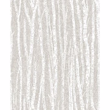Picture of Toyon Taupe Birch Tree Wallpaper