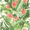 Picture of Tropical Paradise Peel and Stick Wallpaper