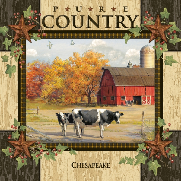 Picture for category Pure Country