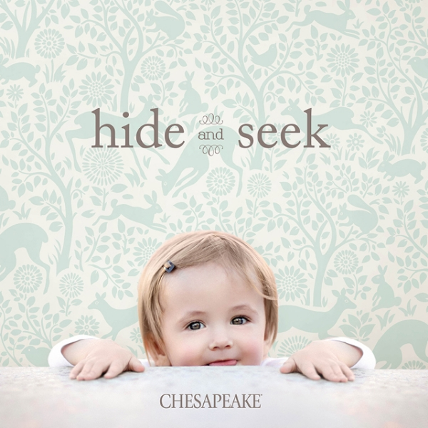Picture for category Hide and Seek