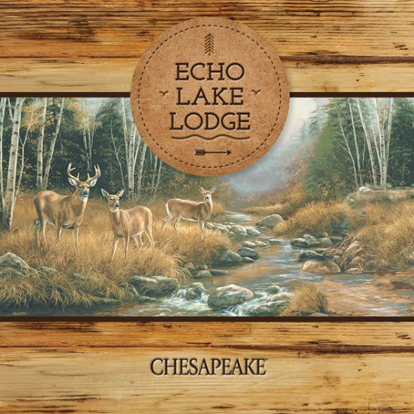 Picture for category Echo Lake Lodge
