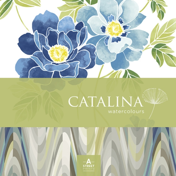Picture for category Catalina
