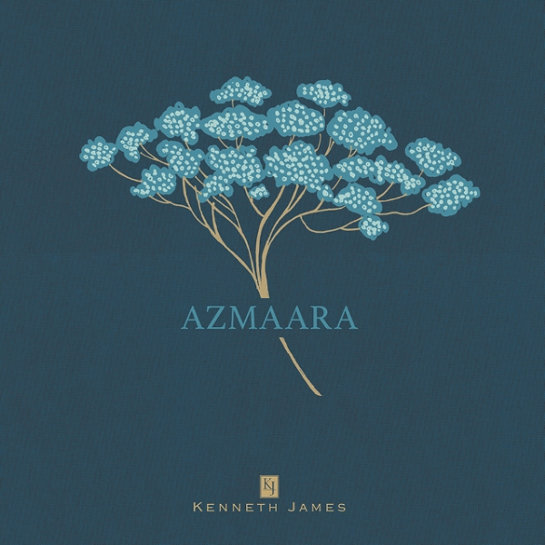 Picture for category Azmaara