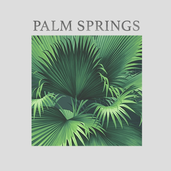 Picture for category Palm Springs