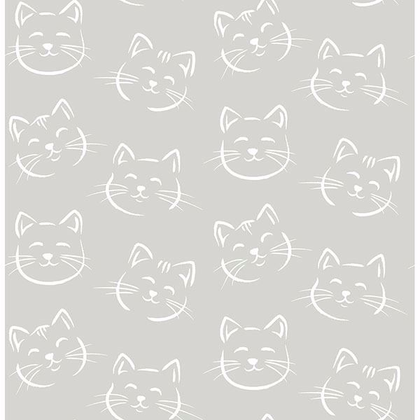Picture of Purr Grey Cat Wallpaper