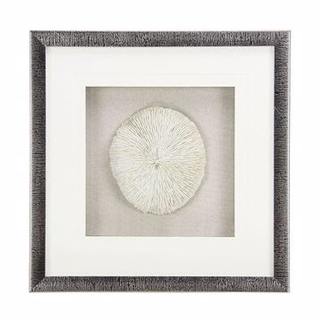Picture of Rozella Off-White Mushroom Coral Shadowbox