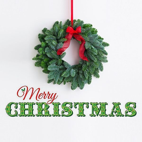 Dwpq2206 Merry Christmas Wall Quote By Wallpops