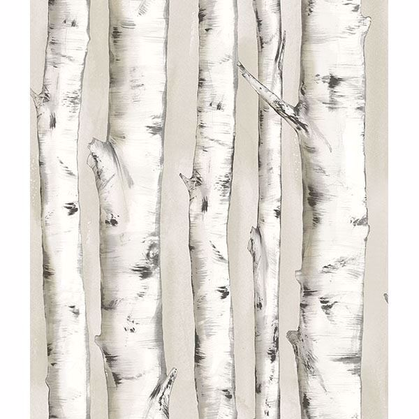 Picture of Pioneer Off-White Birch Tree Wallpaper