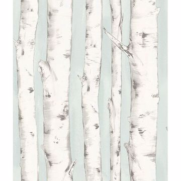 Picture of Pioneer Light Blue Birch Tree Wallpaper