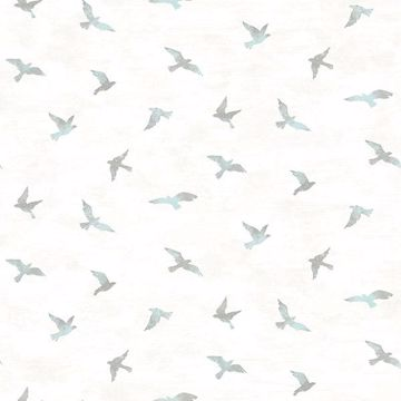 Picture of Soar Turquoise Bird Wallpaper