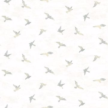 Picture of Soar Grey Bird Wallpaper