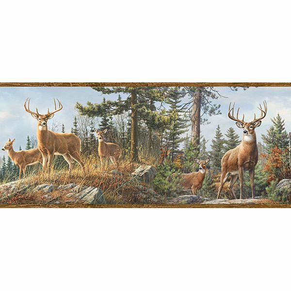 Picture of Whitetail Crest Multicolor Forest Border