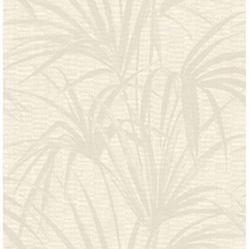 Picture of Hilo Cream Palm Wallpaper