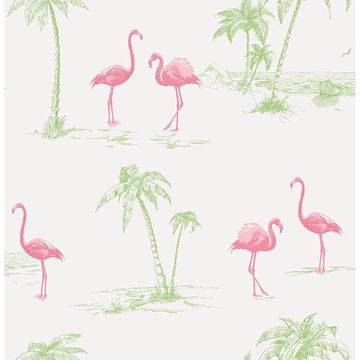 Picture of Sarasota Pink Flamingos Wallpaper