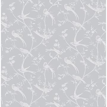 Picture of Norwich Light Grey Bird Trail Wallpaper