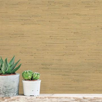 Picture of Shan Light Green Grasscloth