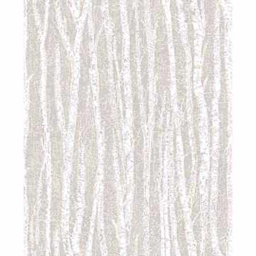 Picture of Flay Taupe Birch Tree Wallpaper