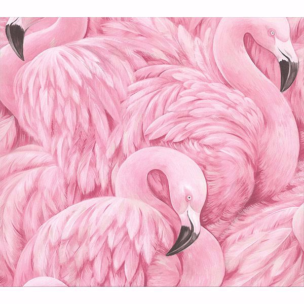 Picture of Horace Pink Flamingos Wallpaper