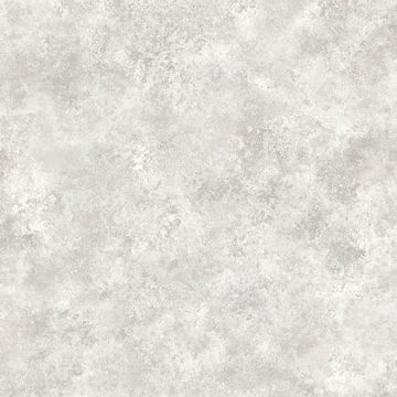 Picture of Leon Platinum Plaster Texture Wallpaper