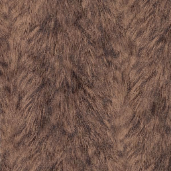 Picture of Trieste Brown Wolf Wallpaper