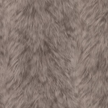 Picture of Trieste Taupe Wolf Wallpaper