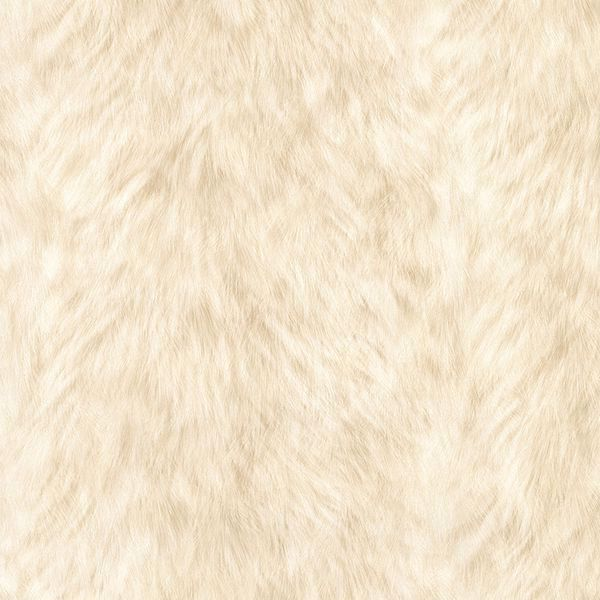 Picture of Trieste Cream Wolf Wallpaper