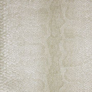 Picture of Sovana Cream Python Wallpaper