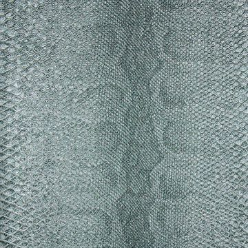 Picture of Sovana Teal Python Wallpaper