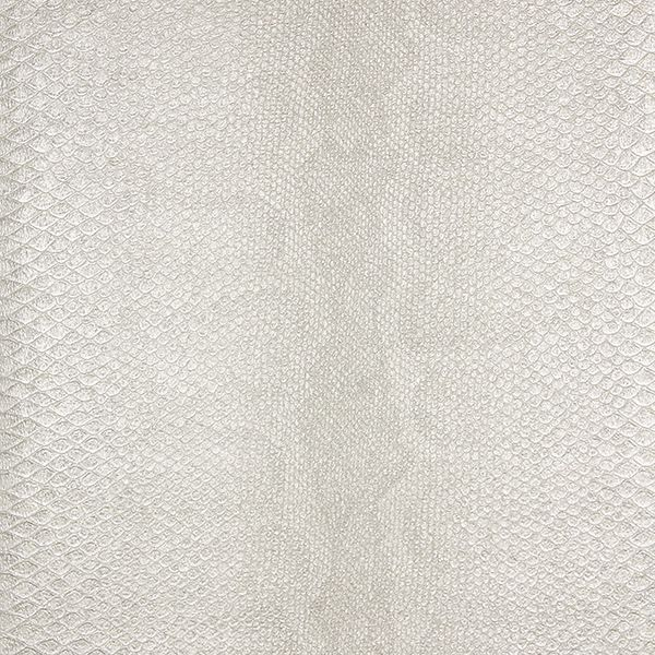 Picture of Sovana Ivory Python Wallpaper