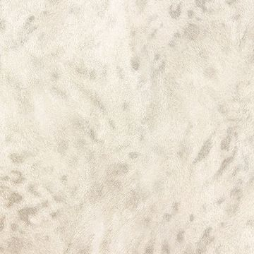 Picture of Umbria Ivory Jaguar Wallpaper