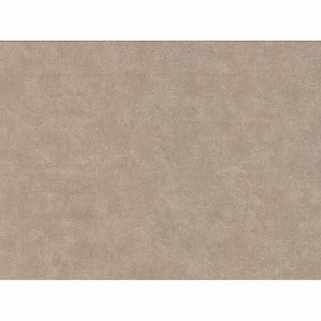 Picture of Clegane Light Brown Plaster Texture Wallpaper