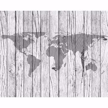 Picture of World Map Timber Wall Mural