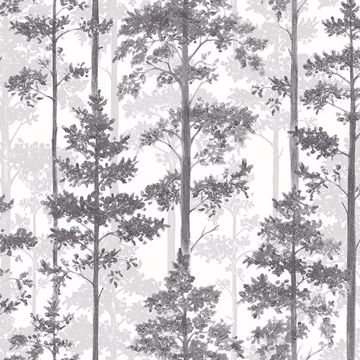 Picture of Pine Multicolor Silhouette Trees Wallpaper