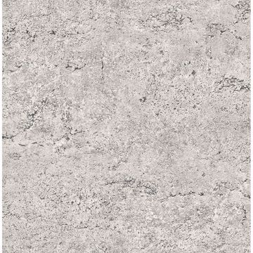 Picture of Concrete Rough Taupe Industrial