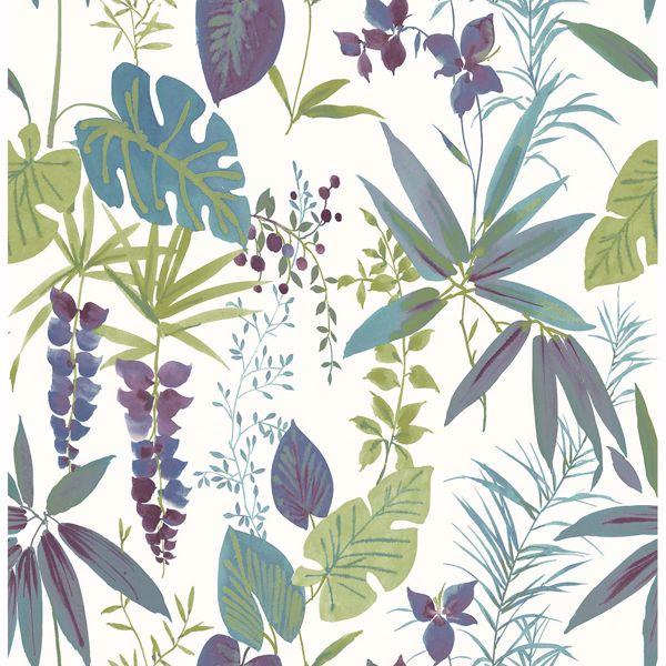 Picture of Descano Exotic Plum Botanical