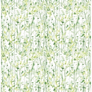 Picture of Willow Green Leaves
