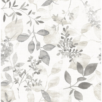 Picture of Gossamer Grey Botanical Wallpaper