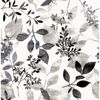 Picture of Gossamer Black Botanical Wallpaper