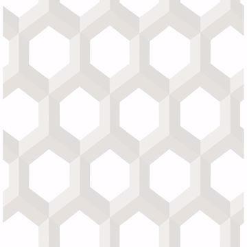 Picture of Hex Neutral Geometric Wallpaper