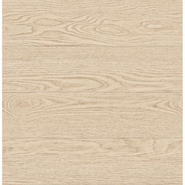 Picture of Salvaged Wood Neutral Plank Wallpaper