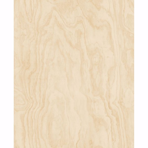 Picture of Bentham Neutral Plywood Wallpaper