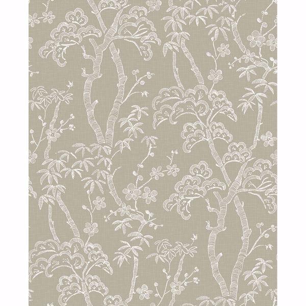 Picture of Bonsai Tan Tree Wallpaper