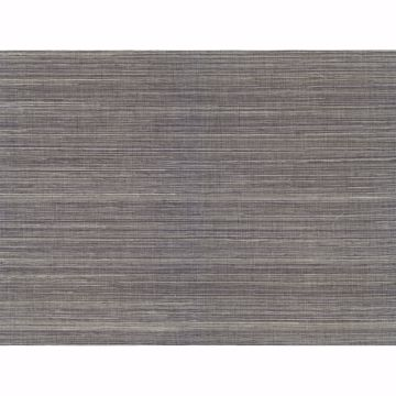 Picture of Wukan Navy Grasscloth Wallpaper