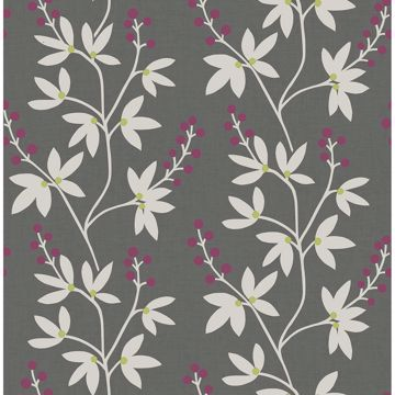 Picture of Linnea Elsa Charcoal Botanical Trail Wallpaper