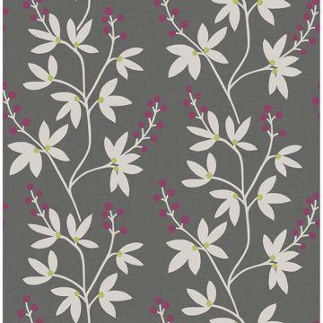 Picture of Linnea Elsa Charcoal Botanical Trail Wallpaper